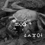 Bonus - Crabbing For Beginners, on the Dog Days Of Podcasting Day 4