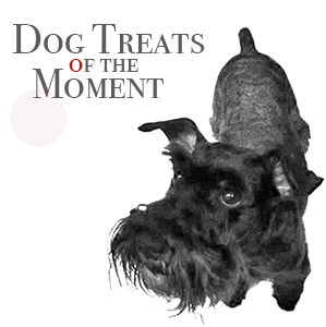 Dog Treats of the Moment
